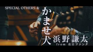 SPECIAL OTHERS 10周年イヤー総決算! コラボ作品集 『SPECIAL OTHERS Ⅱ...