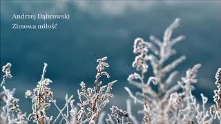 Andrzej Dąbrowski - Zimowa miłość [Official Audio]
