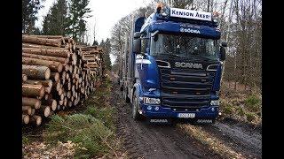 Scania R580 timmerbil