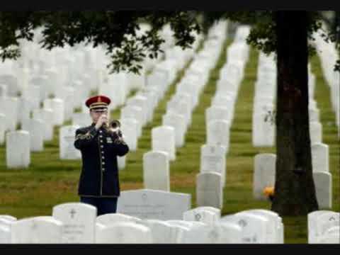 A Veteran's Day Salute