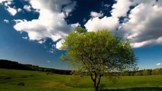 Pietro Mascagni - Cavalleria Rusticana (Intermezzo Sinfonico)