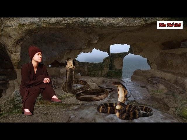 Góa phụ 30 tuổi xinh đẹp lên núi đi tu và câu chuyện rùng rợn cặp rắn thầntrên núi cấm| TÂN THẾ GIỚI