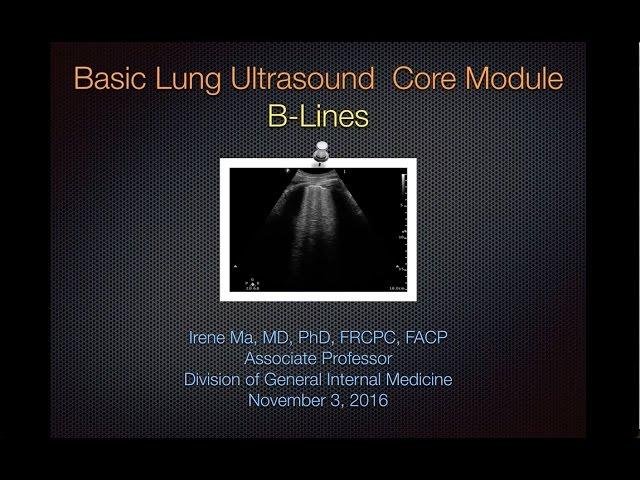 Basic Lung - B Lines Nov 2016