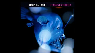 Stephen Huss - Stranger Things (Unknown Being Mix)