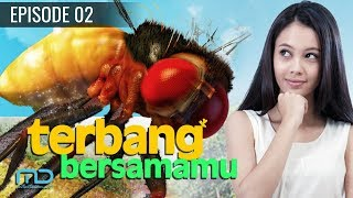 Video Terbang Bersamamu - Episode 02 download MP3, 3GP, MP4, WEBM, AVI, FLV September 2019