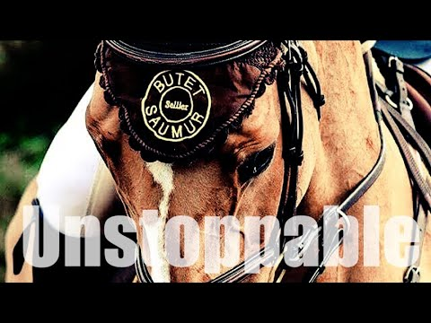 Unstoppable || Equestrian Music Video ||