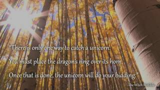 Book trailer for THE DRAGON'S RING