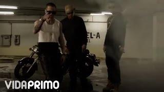 Baby Rasta Y Gringo - No Dices Na [Official Video]