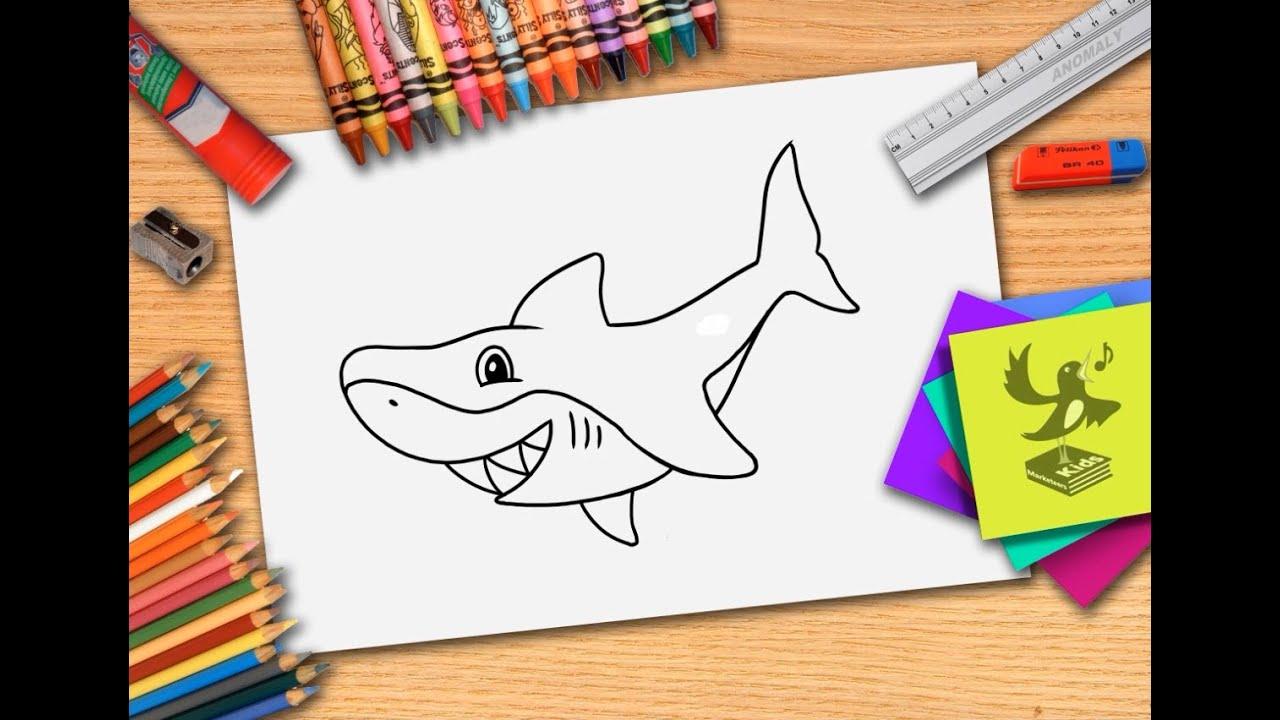 hoe teken je een haai zelf haaien leren tekenen
