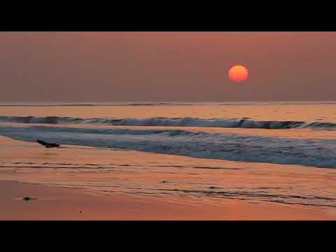 Waves at Sunset in HD slow motion CC BY NatureClip Free Stock Video Footage Download Clips