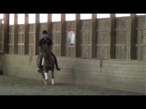 2012 10 06_Sweet Pea and Trainer
