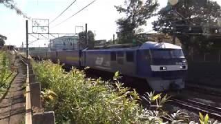 貨物列車撮影記 東海道本線 草薙~清水間 2018/11/17 thumbnail