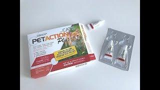 IHERB: Pet Action Plus, For Cats, 3 Doses ( Защита от блох и клещей для кошек) - Видео обзор