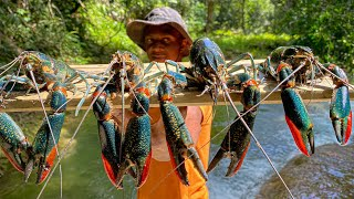 Giant FreshWater Lobster Catch Clean & Cook