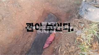 2020윤달 전북 고창-묘지개장 묘지이장