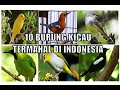 Burung Kicau Termahal Di Indonesia  Mp3 - Mp4 Download