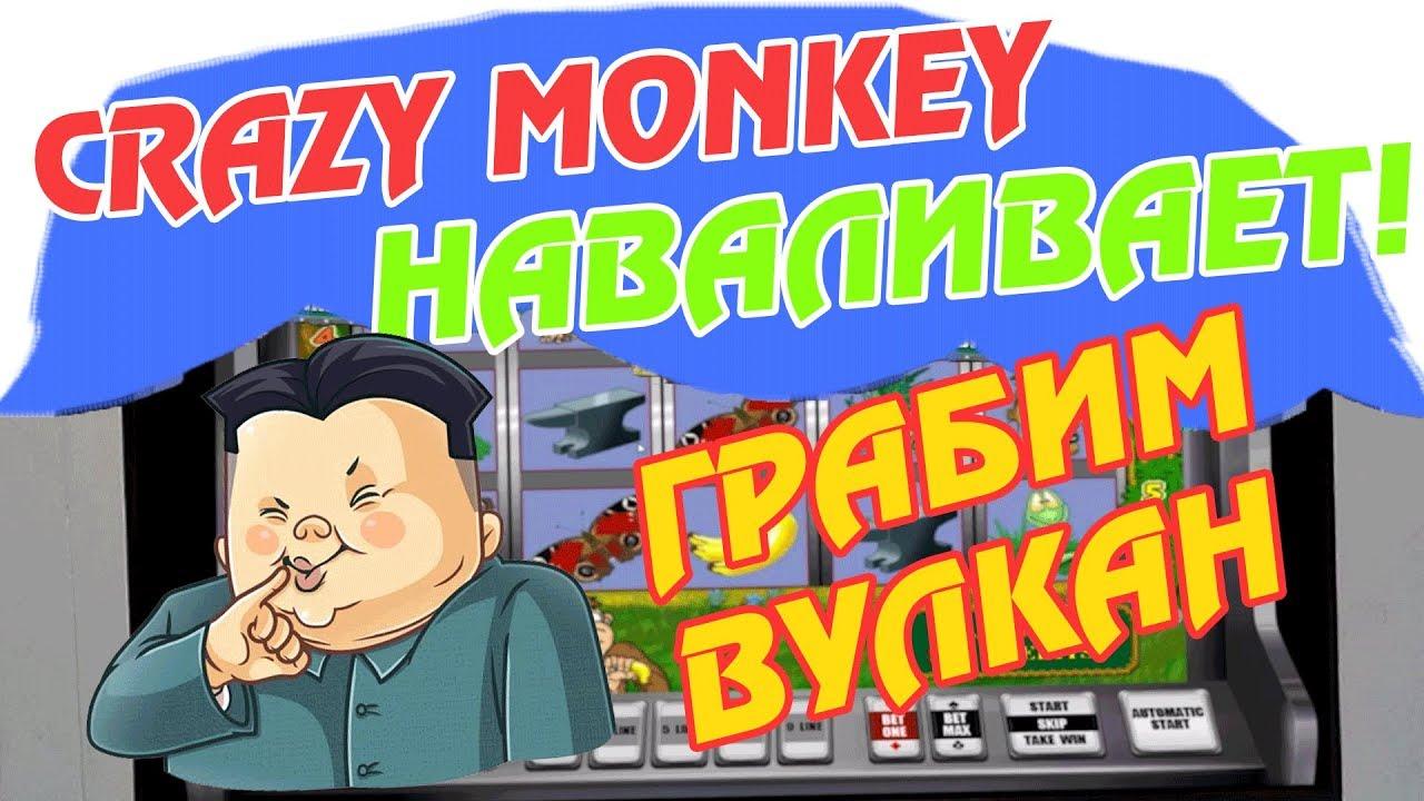 Автомат Crazy Monkey наваливает! Будем Грабить Вулкан в Онлайн Казино