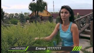 видео Виды малых садов ландшафтного дизайна