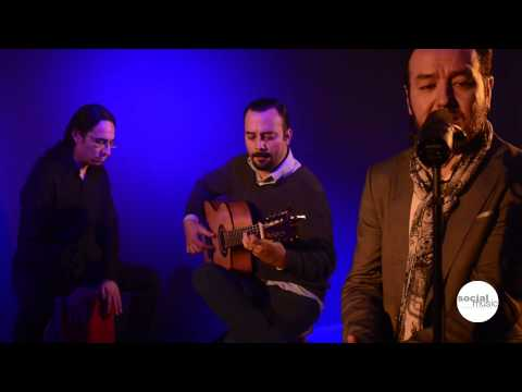 De Cante y Madera, Historia de un Amor | Flamenco, Socialmusic Eventos