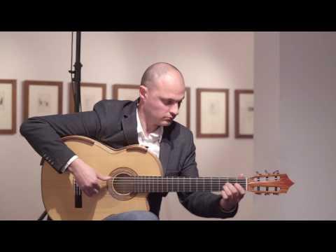 FLAVIO SALA - I Colori Dei Suoni Di Picasso (GUITAR CONCERT Full HD)