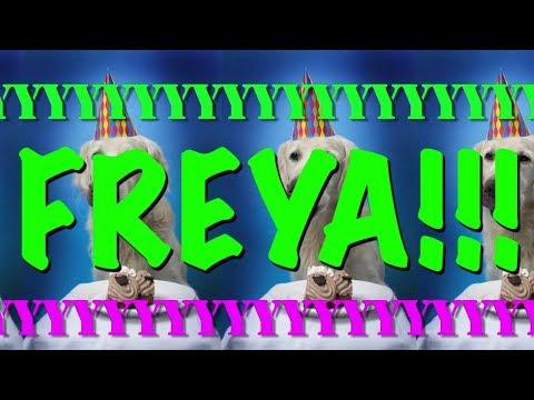 happy-birthday-freya!---epic-happy-birthday-song