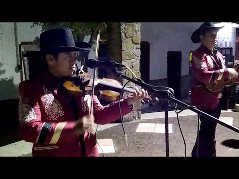 TRÍO DIAMANTE HUASTECO EN COXCATLÁN, S. L. P.