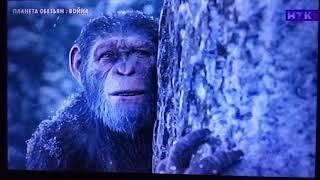 Планета обезьян война Концовка