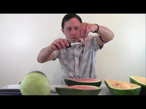 How to Grow the Best Tasting Crops in Your Garden By Using a Refractometer