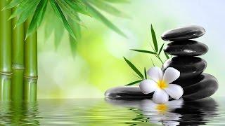 Nhạc thiền, nhạc thư giãn với những hình ảnh thiên nhiên đẹp ☯26