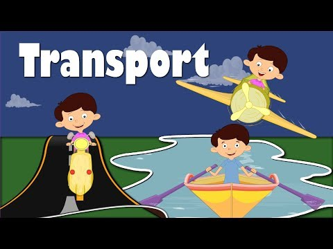 Modes of Transportation | Videos for Kids