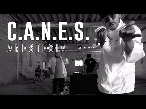 Anestesia - C.A.N.E.S. (Video Oficial)