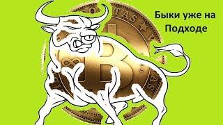 Биткоин и весь криптовалютный мир готовится к новому бычьему рынку