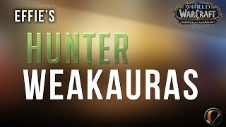 *تجديد* إيفي هي BM & MM صياد WeakAuras عن واو معركة ازيروث التصحيح 8.1