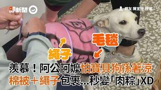 羨慕!阿公阿嬤怕寶貝狗孫著涼 棉被+繩子包裹秒變「肉粽」|寵物|米克斯