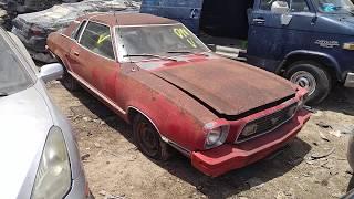 1978 Ford Mustang II Ghia Junk Yard Find.