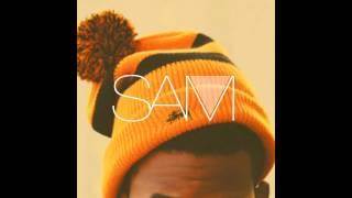 SAM - C