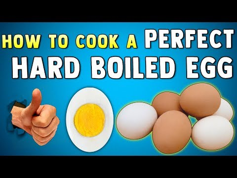 HOW TO COOK THE PERFECT HARD BOILED EGG + How To Peel It Easier & Tell If You Over Cooked The Eggs
