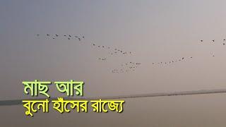 মাছ আর বুনো হাঁসের রাজ্যে | bdnews24.com