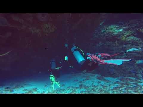 SWS customer videos | 95 foot AOW deep dive