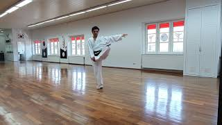 WinTaekwondo Online Training I