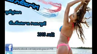 ELECTRO HOUSE 2013 vol2 (Dj Netrik)