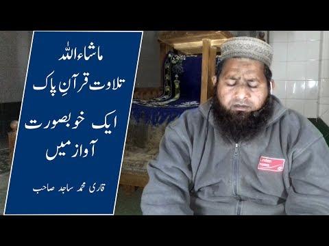 tilawat-e-quran-in-beautiful-voice-by-qari-sajid-ali-|-tangowali
