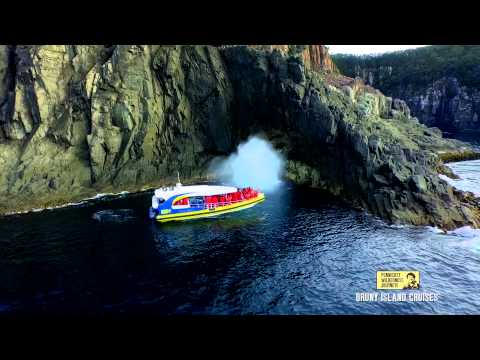 Bruny Island Cruises in 60 Seconds