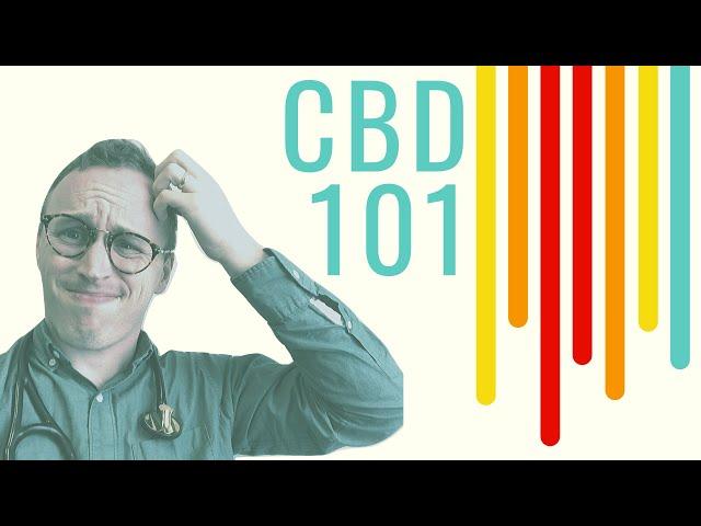 CBD Oil 101: Doctor Explains for ABSOLUTE beginners