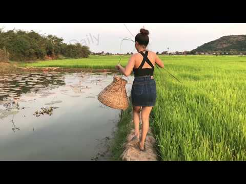 Amazing Girls Net Fishing with Water snake in Rice fields - Top Viral Videos 2017