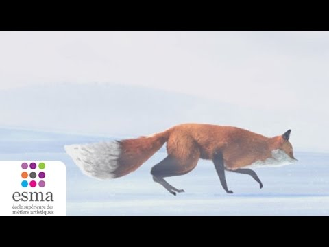 The Short Story of a Fox and a Mouse  ESMA 2015
