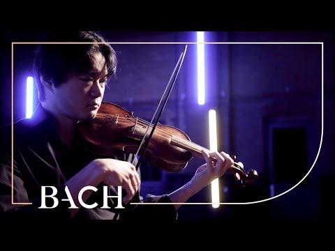 Bach - Violin Partita no. 1 in B minor BWV 1002 - Sato | Netherlands Bach Society
