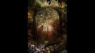 David Sun - Enchanted Forest (B) (The Enchanted Forest)