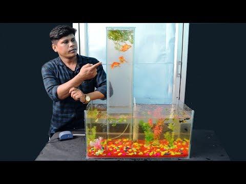 മായമല്ല മന്ത്രമല്ല.. ഇത് വെർട്ടിക്കൽ അക്വാറിയം | How To Make Vertical Aquarium At Home In Malayalam