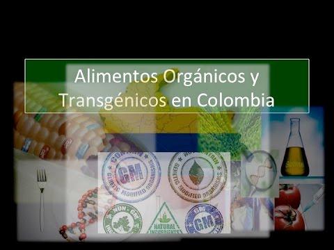 Alimentos Orgánicos En Colombia